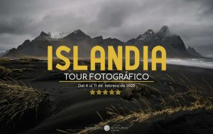 cartel-islandia-2020-1024×643